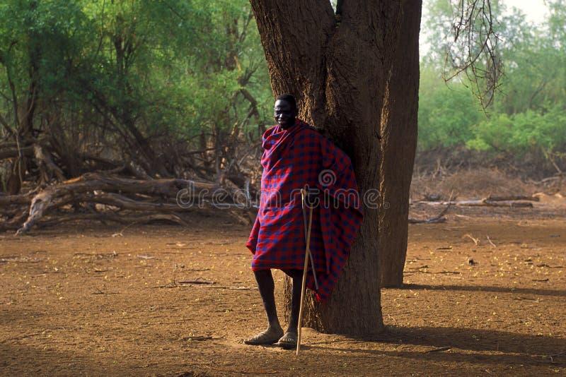 Pastor Turkana (Kenya) fotos de stock royalty free