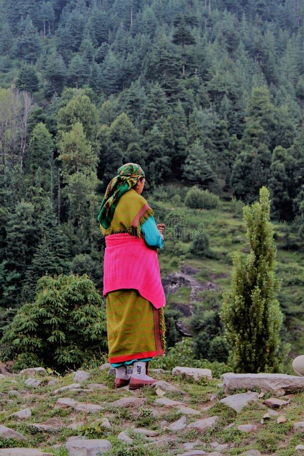 INDIA, Himachal Pradesh, Manali, SHEPHERDESS, REGIONAL COSTUME, MOUNTAIN, HIMALAYA. Pastora cerca de Manali en el Himalaya Tibetano stock images