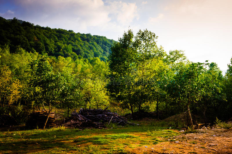 Pastoral Autumn Landscape. Pastoral landscape of Tesvikiye village in the autumn season which is a district of Cinarcik town that is also a district of Yalova royalty free stock photo