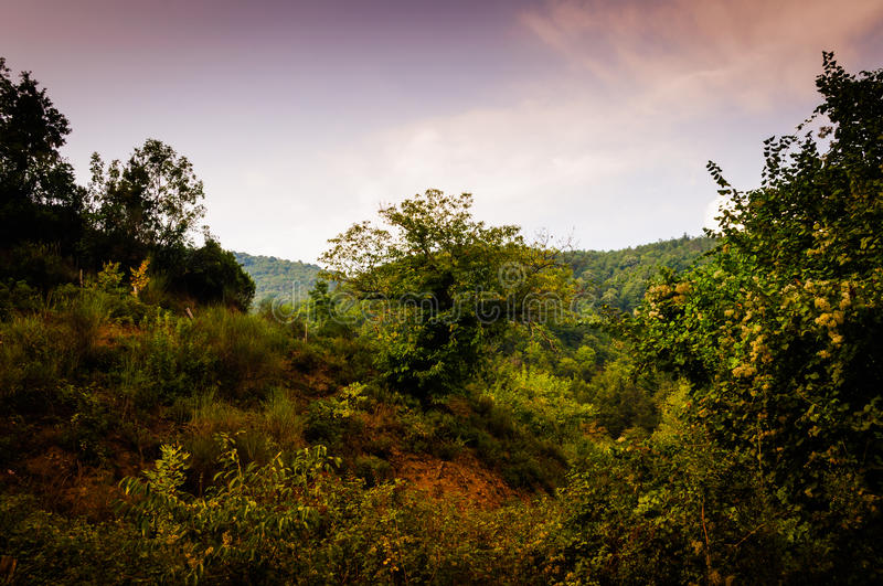 Pastoral Autumn Landscape. Pastoral landscape of Tesvikiye village in the autumn season which is a district of Cinarcik town that is also a district of Yalova stock photography