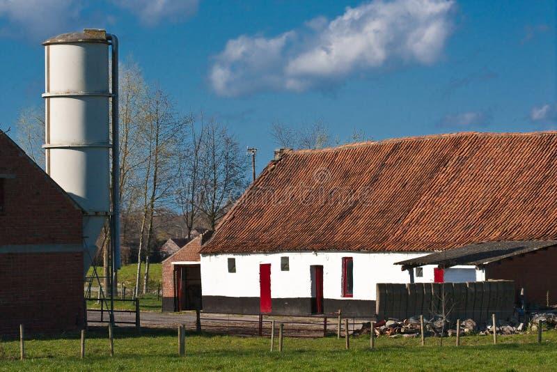 Pastoral farmscape
