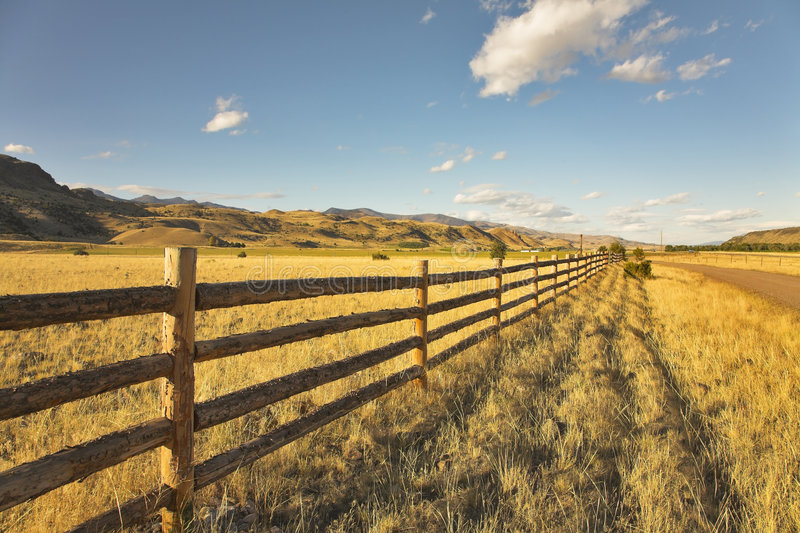 Pastoral midday. royalty free stock photos