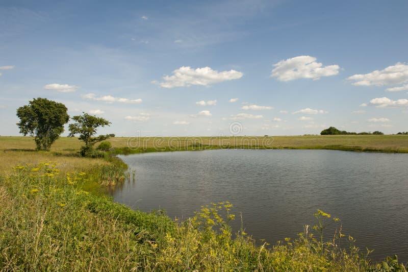 Pastoral pond stock photos