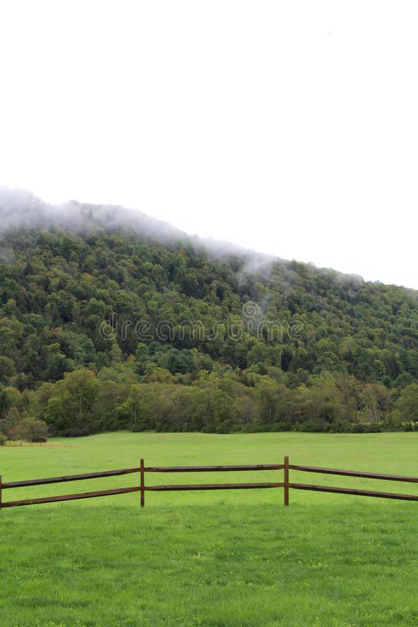 Pastoral scene of a hillside with low clouds and green meadow with fence. Vertical aspect royalty free stock photography