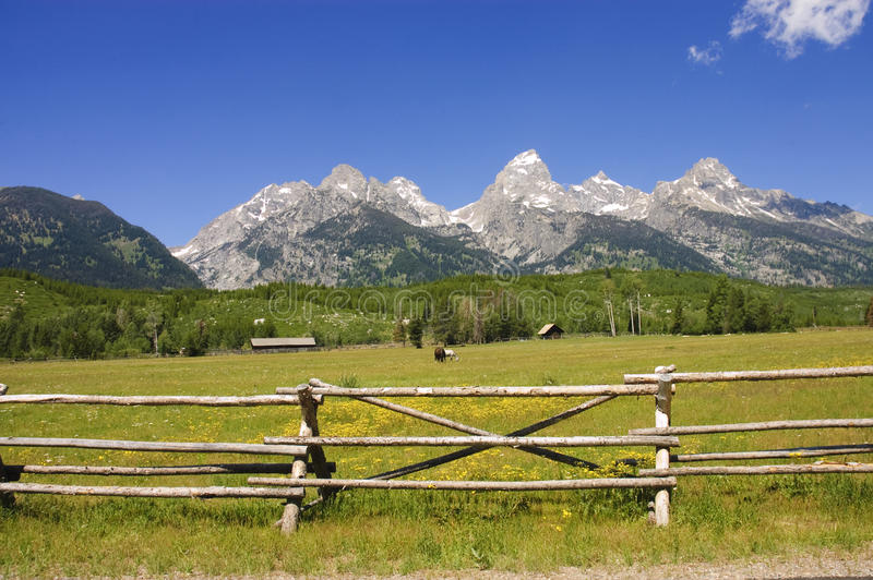 Download A Pastoral Scene In The Tetons Stock Image - Image: 14402927