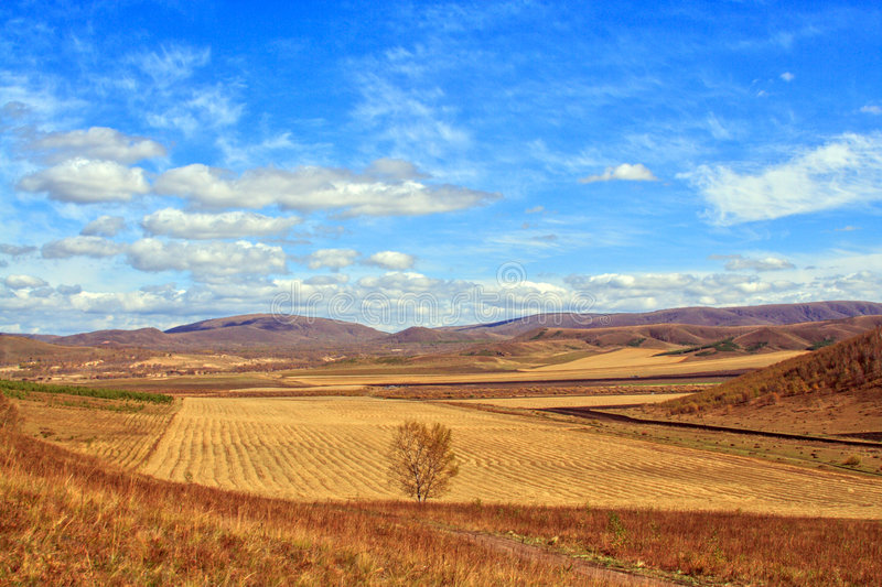 Pastoral scenery royalty free stock photography