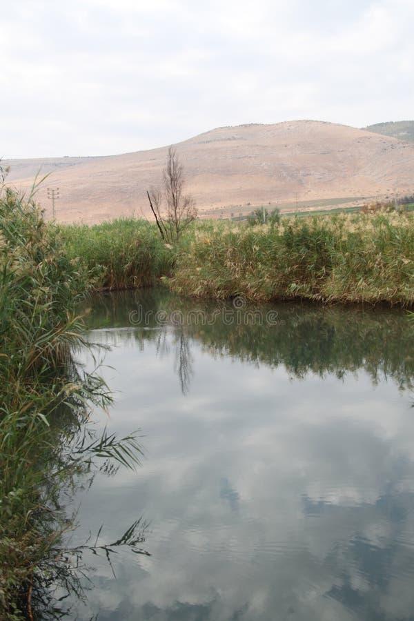 Pastoralny jezioro, dolina wiosny, Izrael obraz royalty free