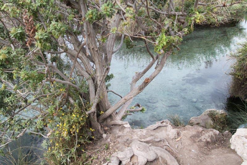Pastoralny jezioro, dolina wiosny, Izrael zdjęcie royalty free