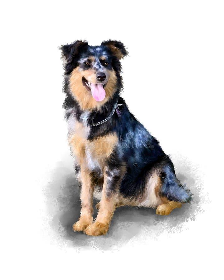 Pastore australiano Compagno del cane Pittura di Collie Watercolor del confine Immagine acrilica illustrazione vettoriale