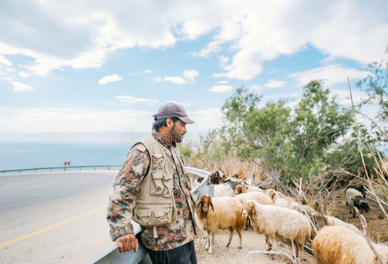 Pastore e moltitudine di pecore immagini stock