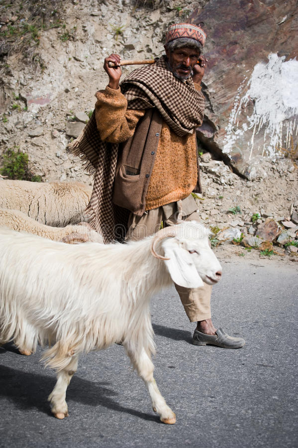 Pastore Himalayan dall'India, valle di Lahoul fotografia stock