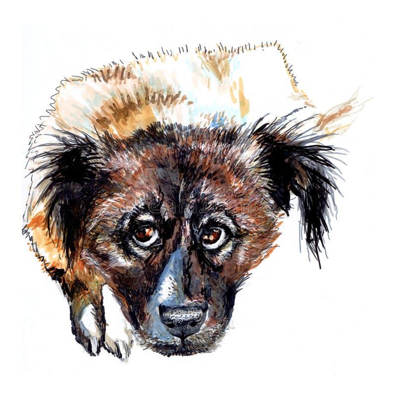 Pastore, immagine caucasica del ritratto del cane illustrazione vettoriale