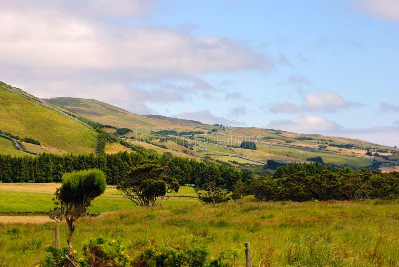 Pastrue landscape, Sao Jorge stock image