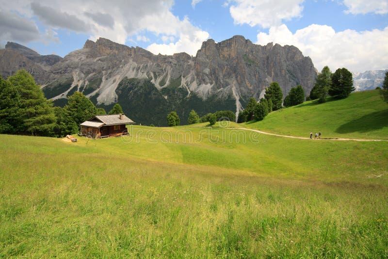 Pasture Alpe di Cisles - Val Gardena royalty free stock photos