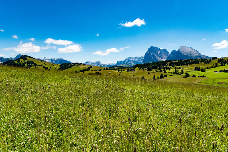 Pastures in Dolomites, Langkofel Group, Italy royalty free stock image