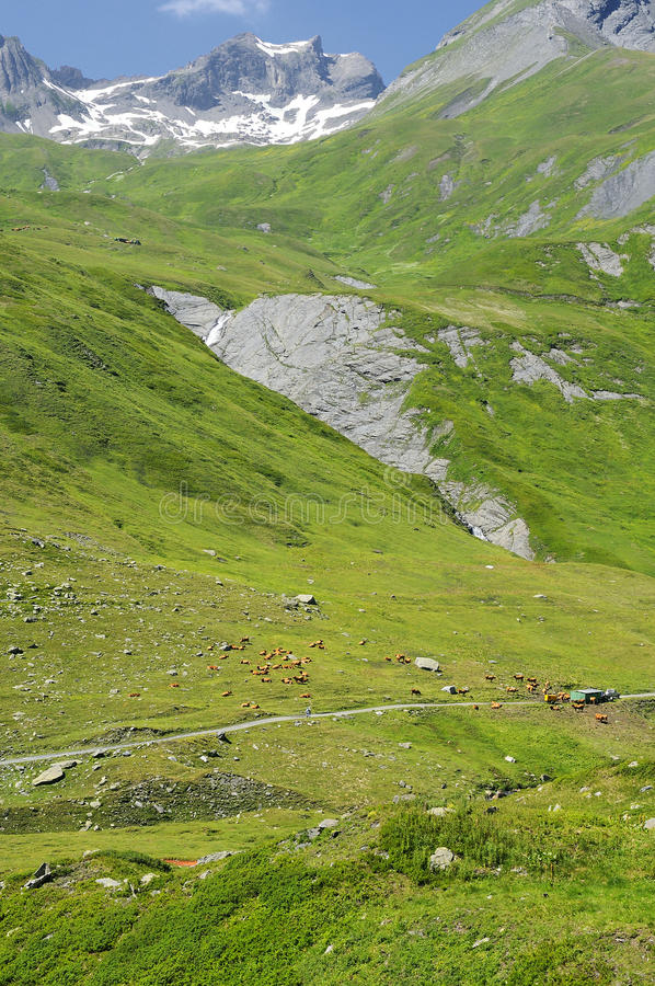Download Pastures Of The French Alps Stock Image - Image: 17936377