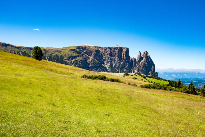 Pastures in front of Mount Sciliar, Dolomites, Italy stock photo