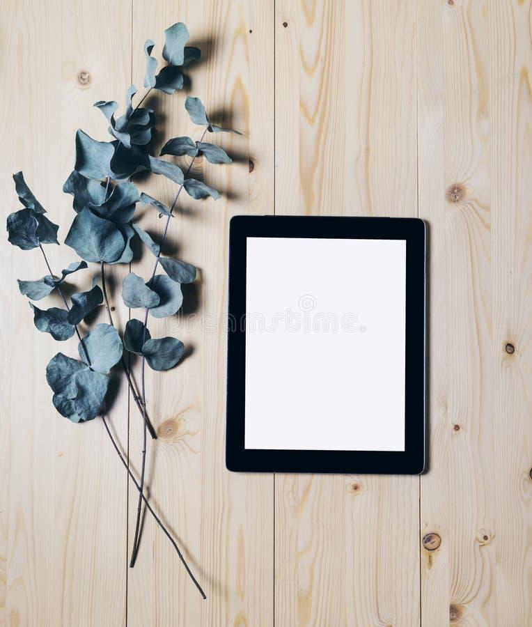 Pastylka z czystym pustego ekranu monitorem z gałąź eukaliptus na drewnianym tle z naturalnym drewnem zaszaluje odgórnego widoku  fotografia stock