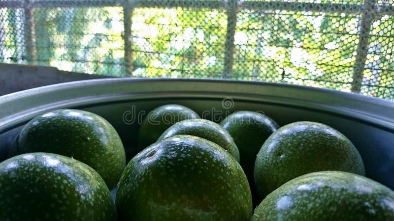 Pasyjnych owoc zbliżenie obrazy stock