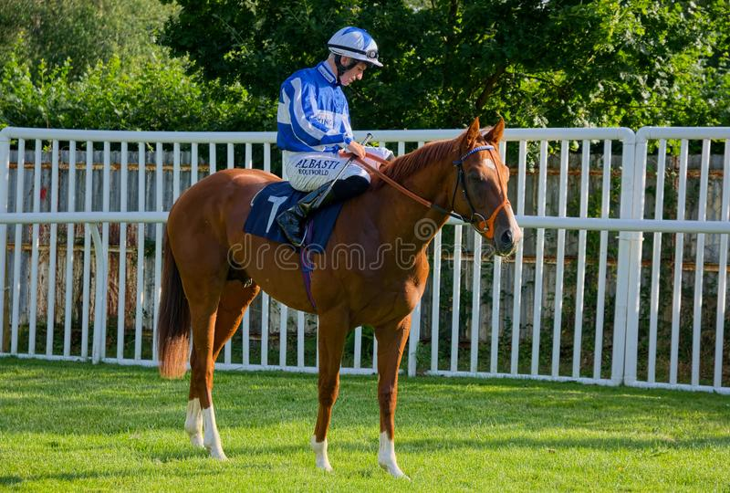 Pat Dobbs Horse racing jockey on Always Fearless. Irish Horse racing Jockey Pat Dobbs riding Always Fearless before the start of the 18:15 Quality Care Insurance royalty free stock photography