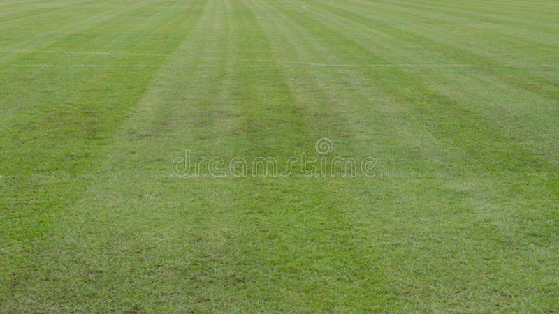 PAT Football stadium. Football grass field texture surface natural color use for background royalty free stock image