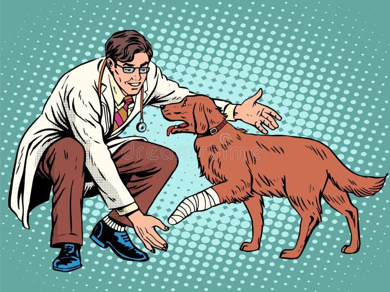 Pata ferida do cão do veterinário ilustração stock