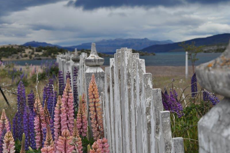 patagonia fotografía de archivo libre de regalías