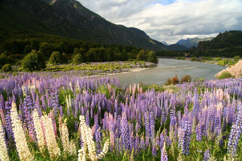 Patagonia chilien photographie stock libre de droits