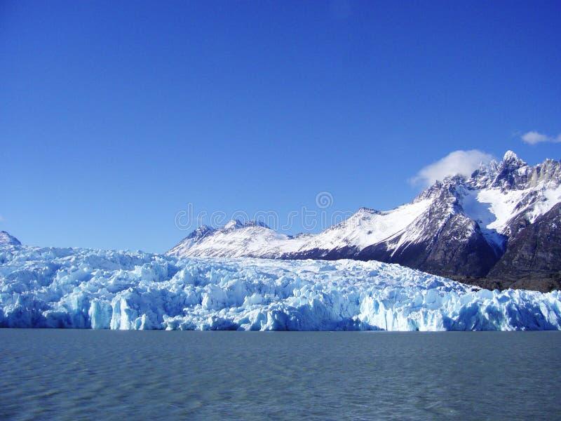 Patagonia de Grey Torres del Paine de glacier photographie stock libre de droits