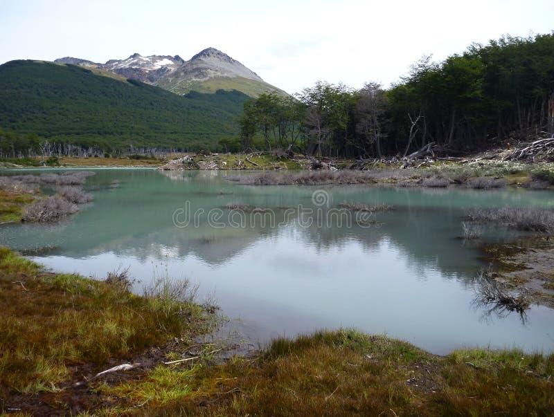 Patagonian landscape in tierra del fuego in argentina royalty free stock photos