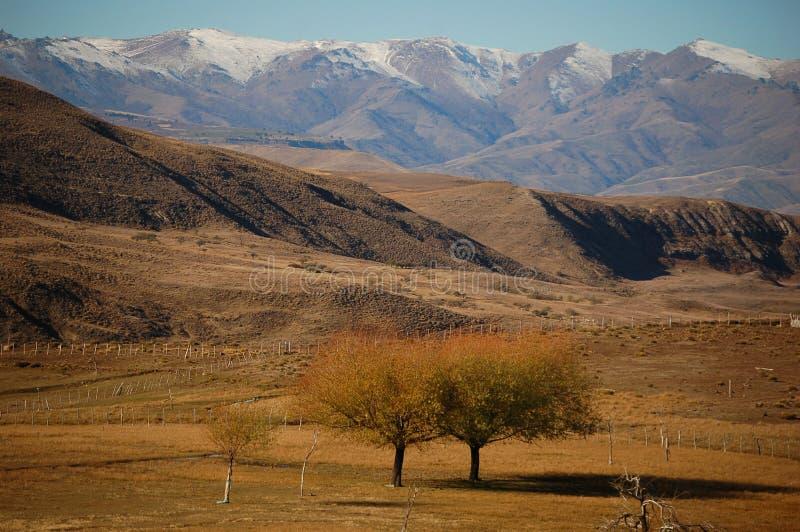 Patagonian landschap/bergen stock foto