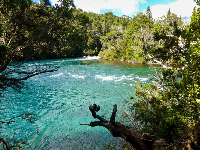 Patagonian river in the forest royalty free stock photo