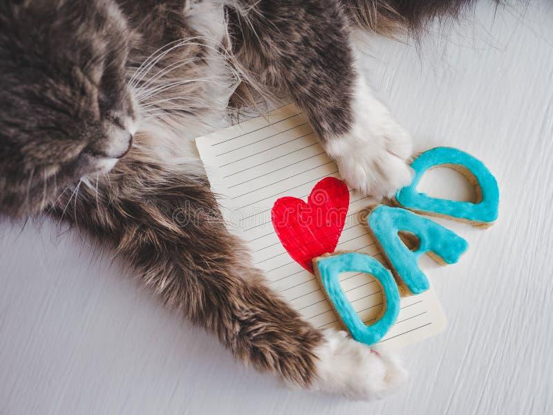 Patas del ` s del gato, tarjeta de felicitación y palabra PAPÁ