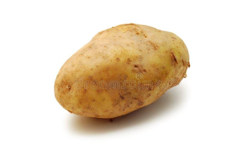 Patata aislada fotos de archivo