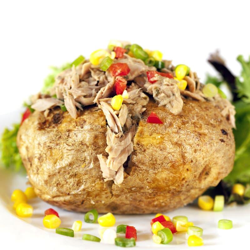 Patata al forno con il tonno fotografia stock