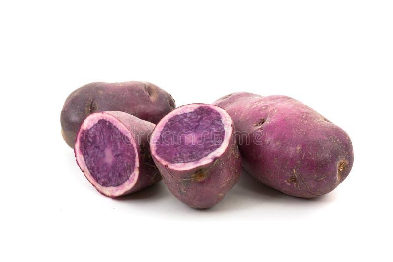 Patata blu - Vitellotte fotografia stock