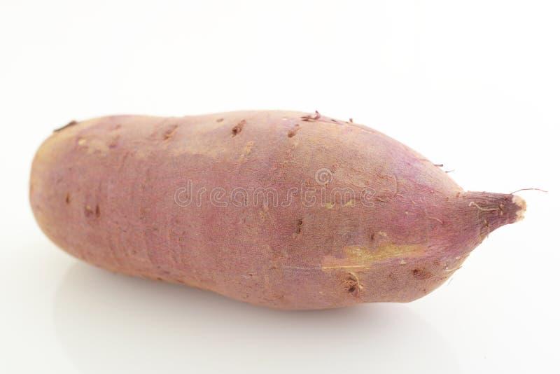 Patata dolce fresca fotografia stock