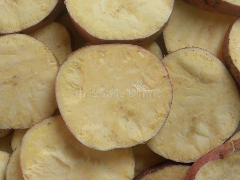 Patata dulce redonda imagen de archivo libre de regalías