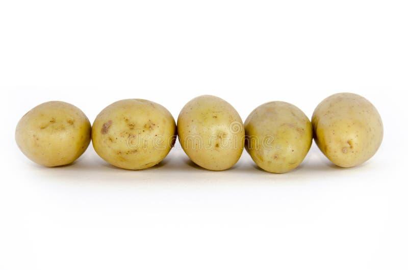 patatas foto de archivo
