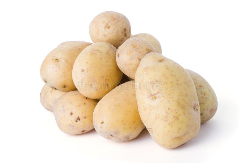 Patatas aisladas en el fondo blanco imagenes de archivo