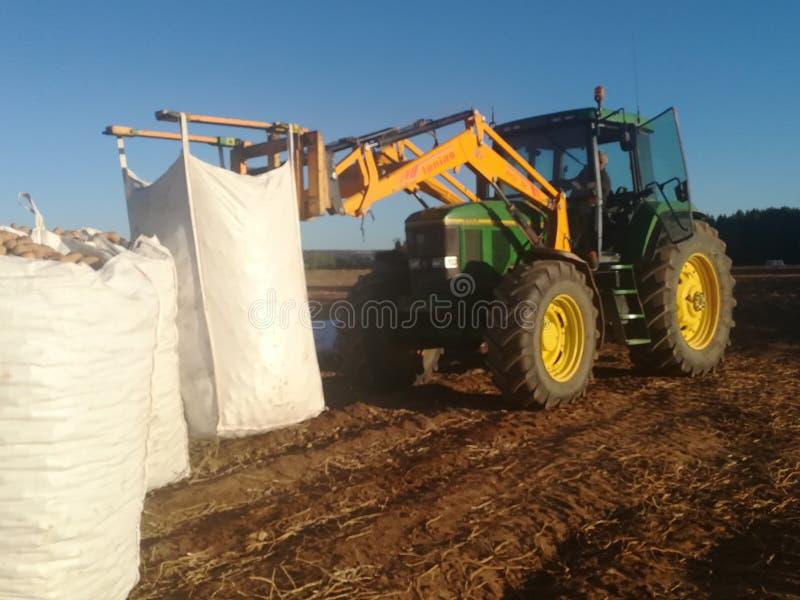 Patatas cargadas tractor agro en una cosecha fotografía de archivo