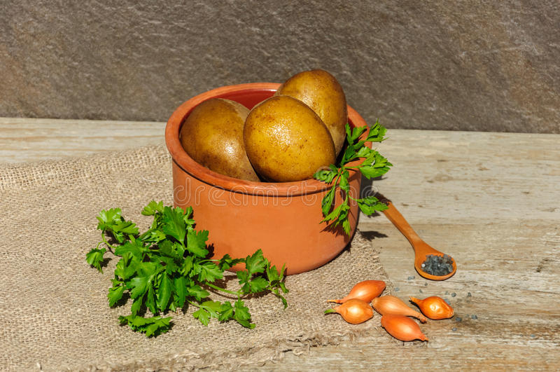 Patatas cocidas o hervidas en sus chaquetas de las pieles con la sal del perejil, soan y de la trufa en un pote de arcilla fotografía de archivo