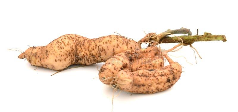 Patatas dulces orgánicas fotografía de archivo libre de regalías