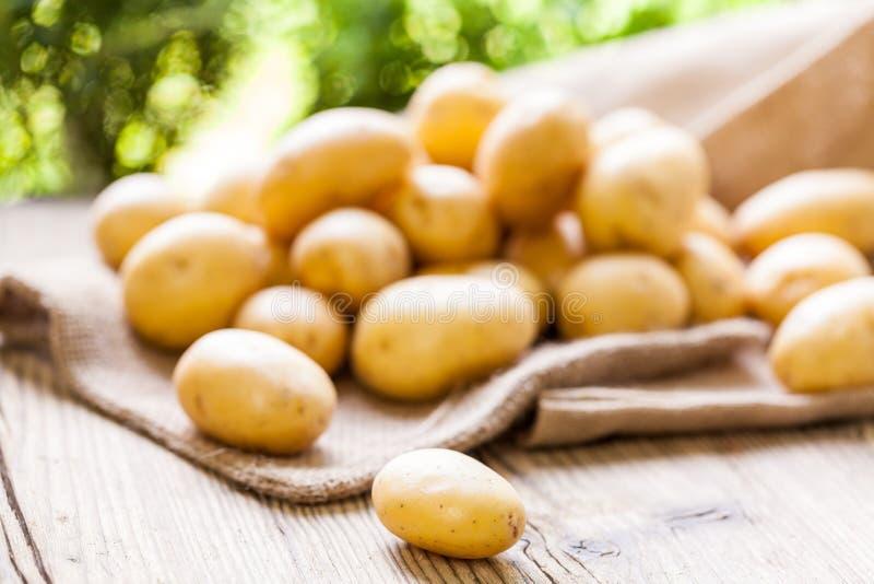 Download Patatas Frescas De La Granja En Un Saco De La Arpillera Foto de archivo - Imagen de fresco, almidón: 41913114