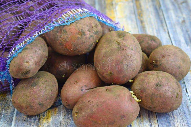 Patatas frescas en una rejilla fotos de archivo