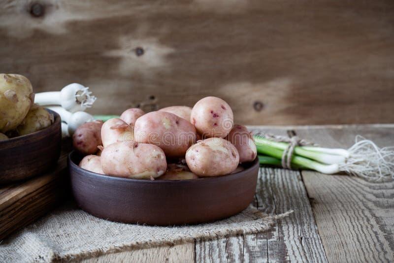 Patatas orgánicas crudas y cebolla verde de la primavera, ajo patata roja fotos de archivo