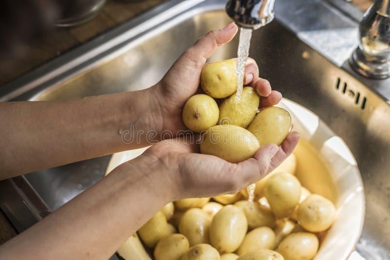 Patatas que se lavan de una persona bajo idea de la receta de la fotografía de la comida de la agua corriente foto de archivo libre de regalías