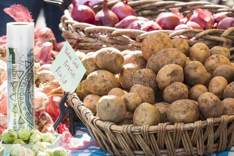 Patatas y cebollas orgánicas frescas del oro del Yukón en el mercado del granjero fotos de archivo