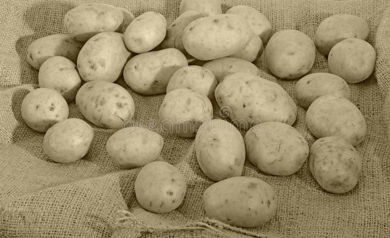 Patatas Y Saco Foto de archivo libre de regalías