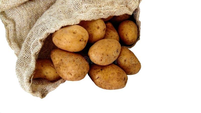 Patatas y sacos del yute en un fondo blanco Comida sana, verduras, mercado, plantación fotografía de archivo